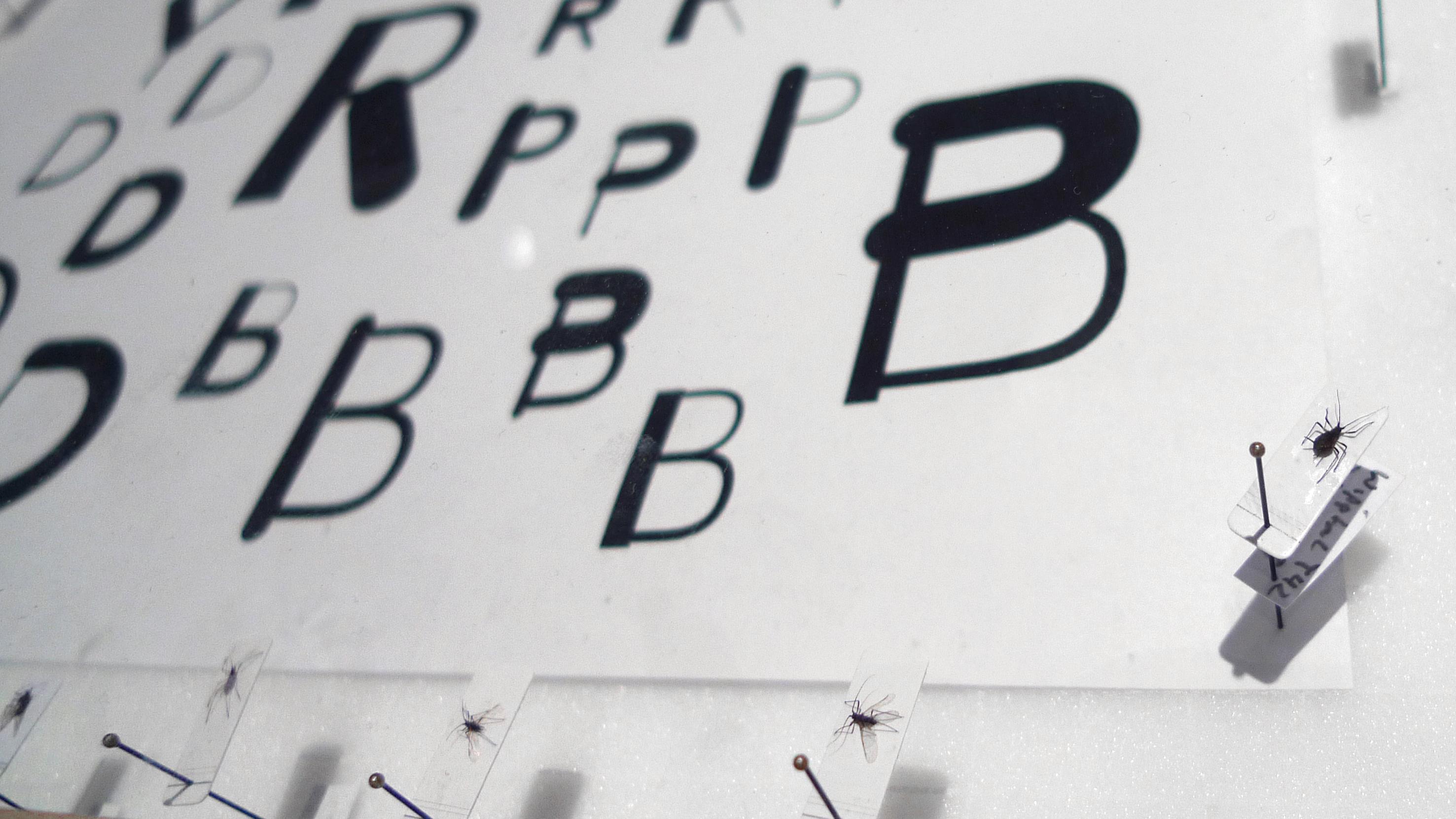 Projekt Lautschrift: Schriftdesign Johannes Lang